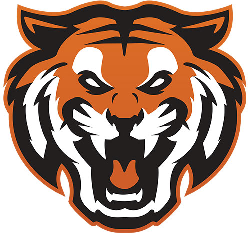 Diman Bengals Face-only Logo